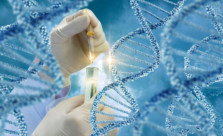 DNA, dna